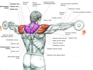 Как снять боль при заболеваний плечевого сустава