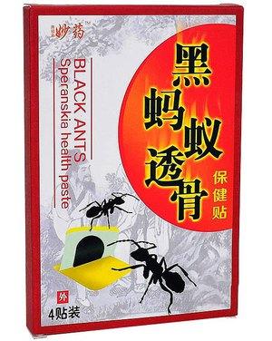 Пластырь от ревматизма создают на основе муравьиного яда