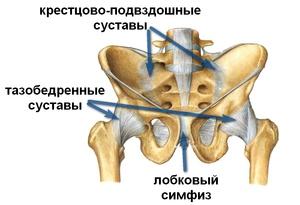 Заболевания тазобедоренного сустава