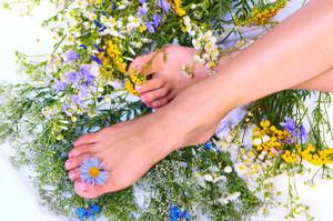 Народные средства при артрозе - какие травы помогут?