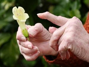 Как лечить ревматоидный артрит народными методами: причины и ...