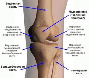болит плечевой сустав после тренировки как лечить