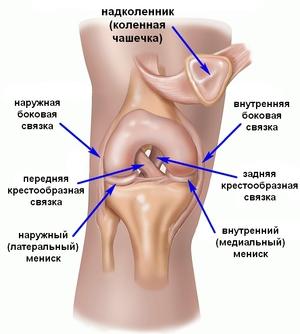 Болезнь суставов ног как называется