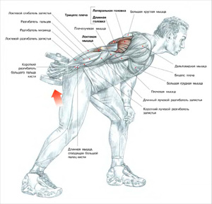 Боль в плече при отведении руки назад