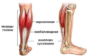 Физиотерапия при повреждении связок голеностопного сустава лечение суставов рисовым отваром