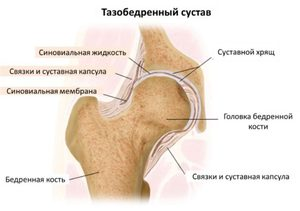 Почему болят тазобедренные суставы ночью